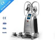 Four Handpiece Cryolipolysis Fat Freeze Slimming Machine With One Year Warranty